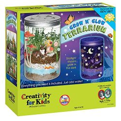 Creativity for Kids Grow 'n Glow Terrarium – Science Kit for Kids