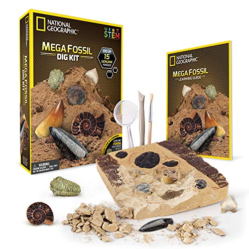 NATIONAL GEOGRAPHIC Mega Fossil Dig Kit – Excavate 15 real fossils including Dinosaur Bones, Mosasaur & Shark Teeth – Great STEM Science gift for Paleontology and Archeology enthusiasts of any age