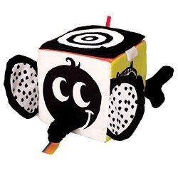 Manhattan Toy Wimmer-Ferguson Learning Cube Multi-Sensory Soft Baby Activity Toy